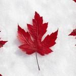 Робота за кордоном. Канада