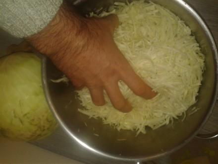 квашена капуста, як приготувати квашену капусту
